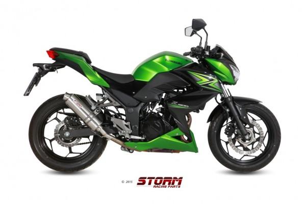 Storm by MIVV GP Kawasaki Ninja 300 R ´13/16 - Z 300 ´15/16